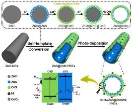 Double-Layered Porous Nanotubes Show Enhanced Photocatalytic Activity Toward Hydrogen Production