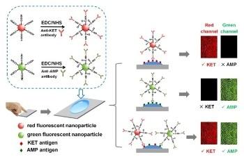 New Method Uses Nanocarrier-Based Biological Fluorescent Probes for Drug Detection