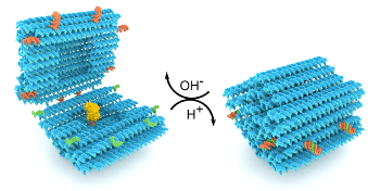 Nanostructures Made of DNA Pave Way Toward Functional Drug-Delivery Vehicles
