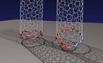 """Unique """"Janus"""" Interface is a Standard Mechanism in the Growth of Carbon Nanotubes"""
