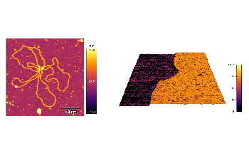 Announcing Nanoelectrical and Environmental Control Accessories for Jupiter XR Large-Sample AFM from Oxford Instruments Asylum Research