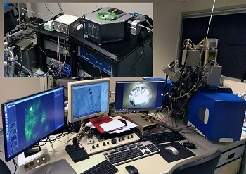 AXT and Delmic Install Unique Cathodoluminescence and CLEM Solution at UTS