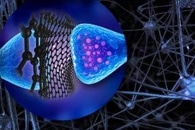 New Nanomedicine Device Efficiently Delivers Drugs