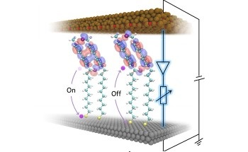 Two-in-One Super Molecule for High-Density Computing