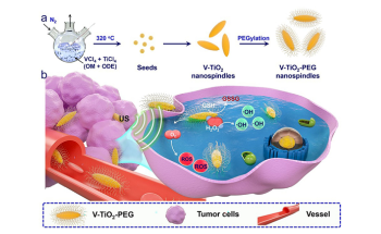 Nanospindles of V-TiO2 Enhance Effect of Ultrasound for Tumor Destruction