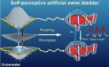 Carbon Nanotubes-Based Self-Perceptive Soft Actuator for Underwater Sensing