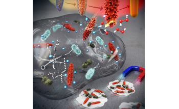 Controlling Nanomaterial Surface Texture to Kill Drug-Resistant Bacteria