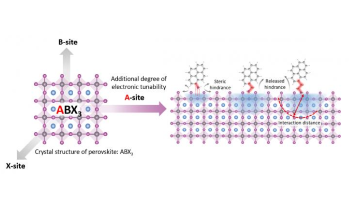 Unused Molecular Component of Perovskites Could Add to Their Electronic Property
