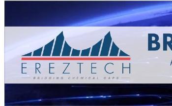 Meet Our 2020 BridgeForward™ Award Winners