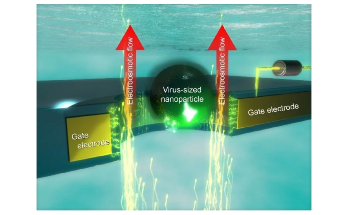 New Voltage-Controlled Nanopores Could Help Create Single-Molecule Sensors