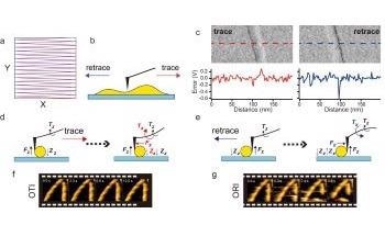 New High Speed Atomic Force Microscopy for Visualizing Biological Processes