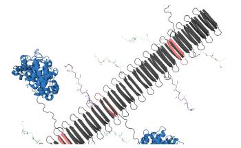 Self-Assembling Nanomaterial can Reduce Damage Due to Inflammatory Diseases