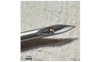 Wireless, Miniaturized Implantable Devices use Ultrasound to Track Body Processes