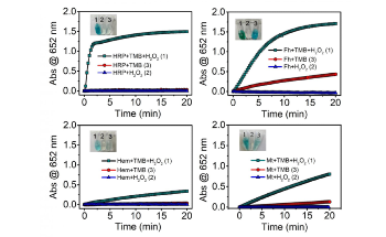 Mineral Nanozymes Could be New Enzyme Mimetics in Earth Systems