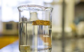 Tiny 'Nanojars' Capture Carbonate and Certain Toxic Anions