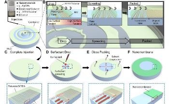 New Float Assembly Technique for Fabricating Skin Electronics Nanomembrane