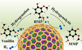 Researchers Use Alloyed Nanoparticles as Catalysts for Hydrodeoxygenation