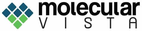Molecular Vista logo.