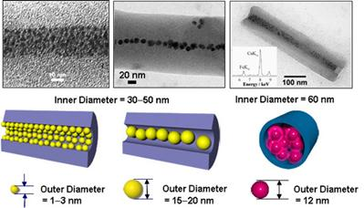 AZoNano - The A to Z of Nanotechnology - Transmission electron micrographs of nanotubes with inner diameters of 30-50 nm, encapsulating gold nanoparticles with different sizes, respectively. (Right) a transmission electron micrograph of a nanotube with an inner diameter of 60 nm, encapsulating ferritin with an outer diameter of 12 nm.