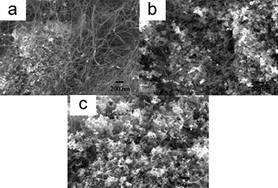 SEM micrographs of bamboo structure carbon nanotubes grown at 850 ºC for 60 minutes on (a) a 5 wt.% Cu-loaded Cu/Mo/MgO, (b) a 10 wt.% Cu-loaded Cu/Mo/MgO and (c) a 15 wt.% Cu-loaded Cu/Mo/MgO catalyst by CVD (Mo loading was 5 wt.% in both cases).