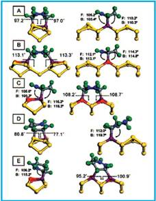 CASTEP-optimized structures for different binding modes of 1,3-CHD on 6 Si(100).